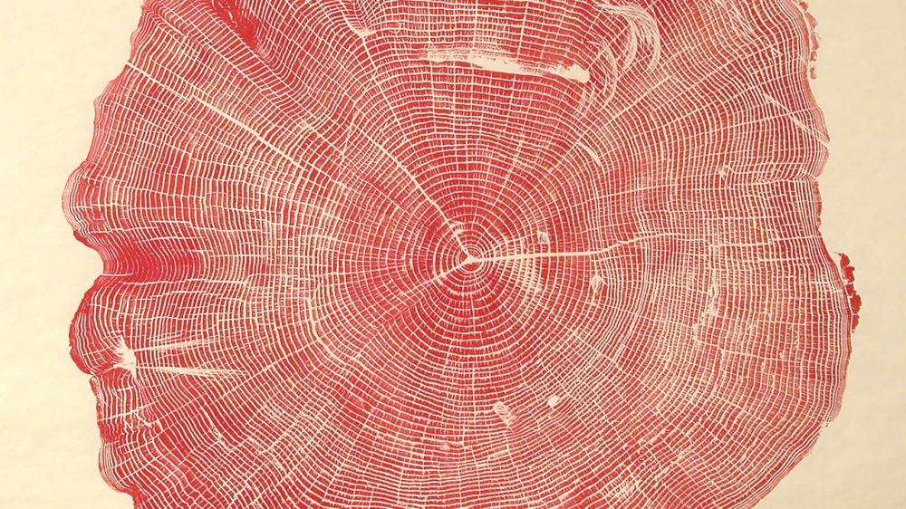 1280-01_2_Woodcut_Ash_Red_p23