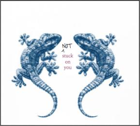 Gecko Boy To FuckBoy